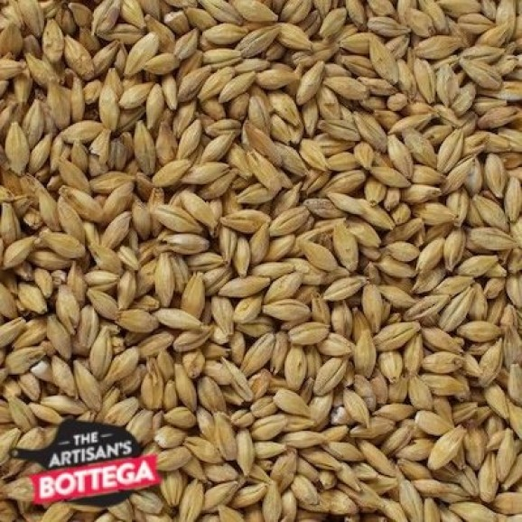 Acidulated Malt - Uncracked By Best Malz (Germany)